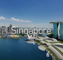 싱가폴연계(다국가)