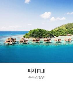 피지 FIJI