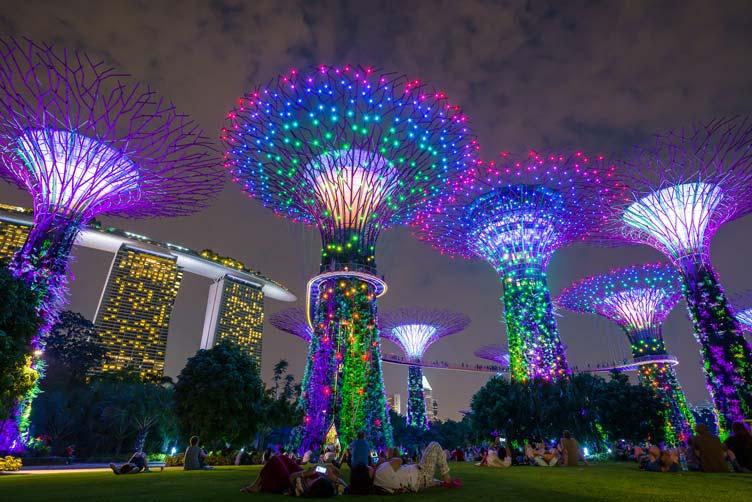 [대만 & 싱가포르] 국적기로 떠나자